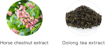 Horse chestnut extract Oolong tea extract