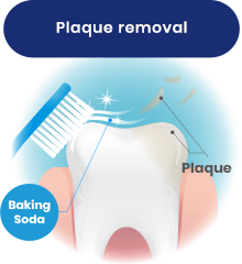 Plaque removal