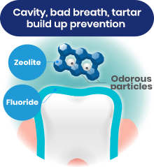 Cavity, bad breath, tartar build up prevention