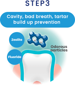 STEP3 Cavity, bad breath, tartar build up prevention